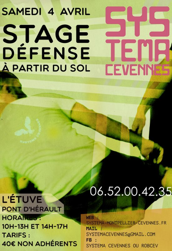 systema-stage-4-avril-d
